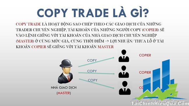 Copy Trade Sự lựa chọn hoàn hảo cho nhà đầu tư mới mẻ?