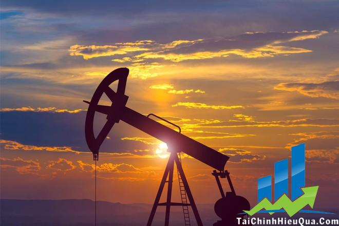 Các chuyên gia luôn có cách đầu tư dầu thô tuyệt vời nhất